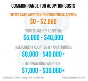 infographic about foster kids in the system